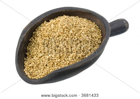Scoop Of Sesame Seeds