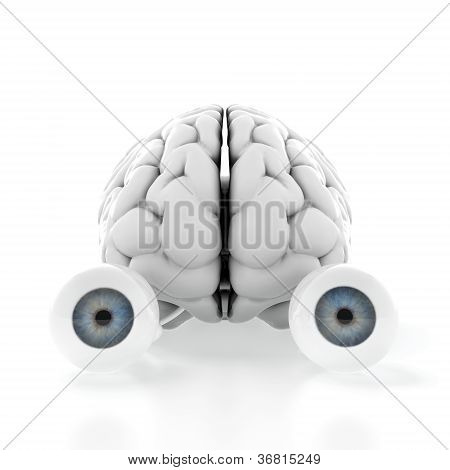 Brain With Eyes