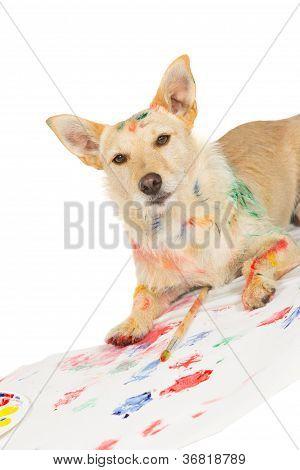Happy Alert Dog Artist