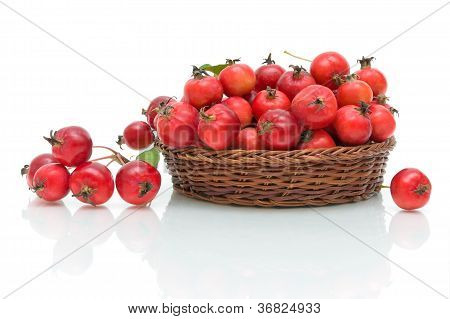 Ripe Apples Small Size On A White Background In The Basket