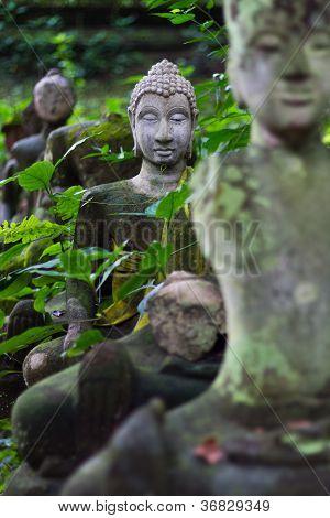 Buddha Head In Wat Umong Chiangmai 2