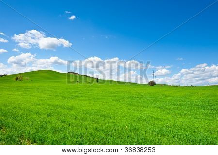 Meadows Of Tuscany