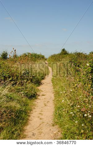 Path to a hill top