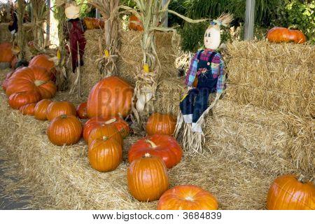Halloween  Straw Dolls And Pumpkins