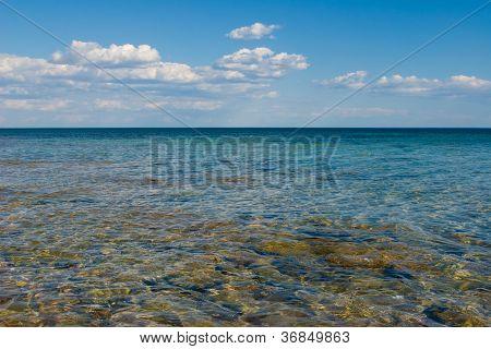 Belyaus, Znamenskoye (black Sea)..