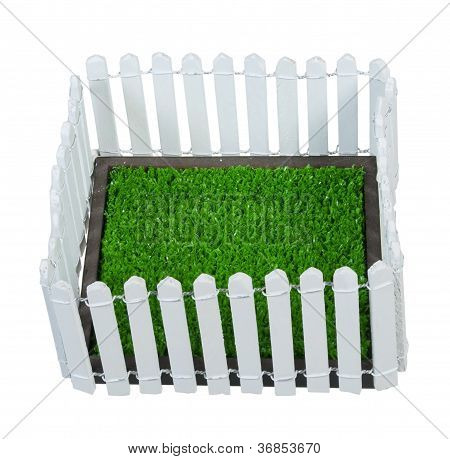 Enclosed Grass Yard