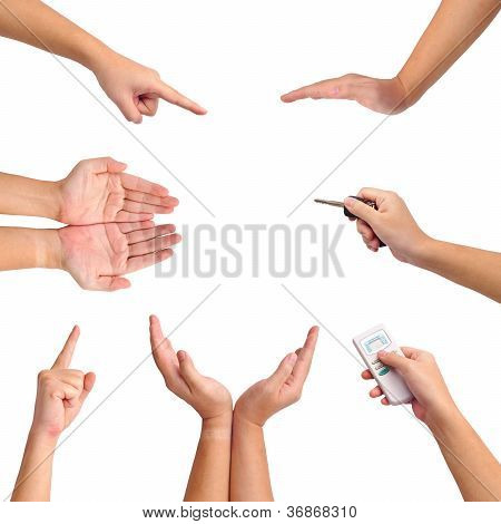 Collection Of Different Gesture Of Hands