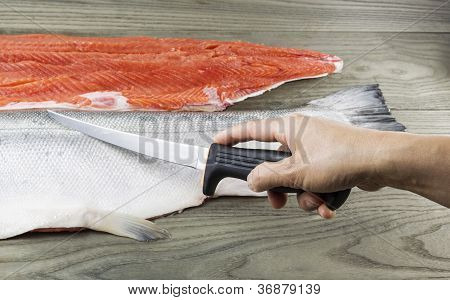 Wild Salmon Being Fillet