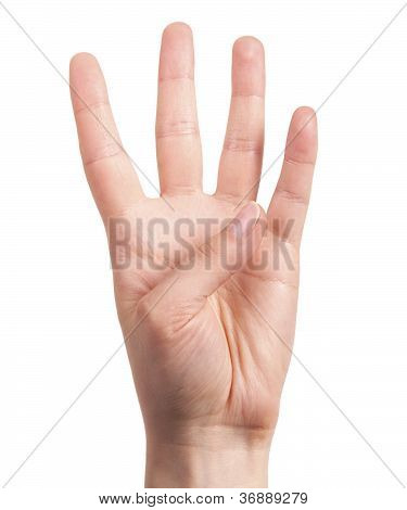 Hand Is Showing Four Fingers Isolated