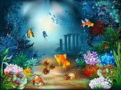stock photo of aquatic animal  - The underwater world of fish and plants - JPG