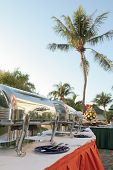 pic of chafing  - outdoor restaurant buffet at tropical with coconut tree at background - JPG