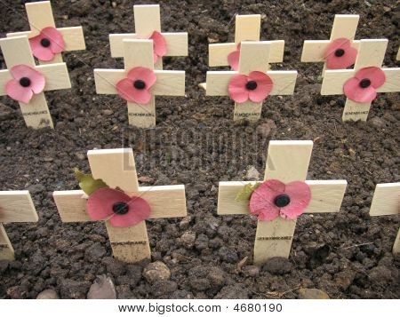 Remembrance Crosses