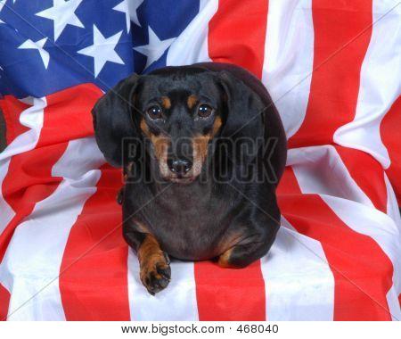 Macy Flag