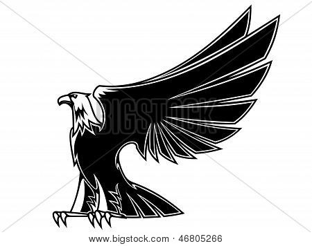 Powerful and majestic eagle