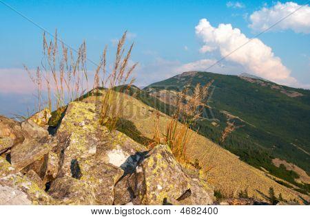 Mountain Stony View