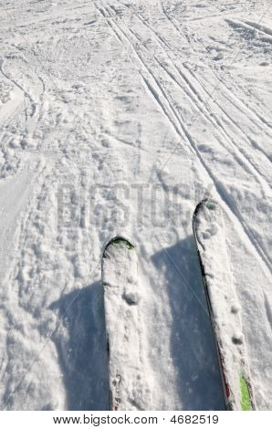 Looking Down At Skis, Stopped On Snow