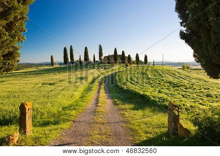 Farmhouse With Cypress And Blue Skies, Pienza, Tuscany, Italy