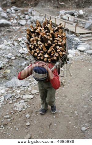 Carrying Firewood