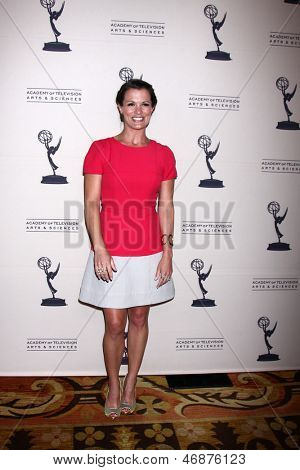 LOS ANGELES - JUN 13:  Melissa Claire Egan arrives at the Daytime Emmy Nominees Reception presented by ATAS at the Montage Beverly Hills on June 13, 2013 in Beverly Hills, CA