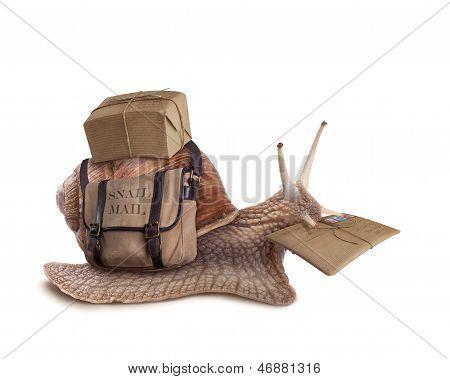 Conceito de correio caracol