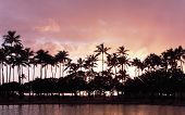 pink Hawaiian sunset