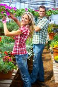 picture of flower shop  - Young smiling people florists working in the garden - JPG