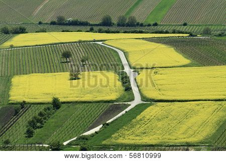 Farm Landscape from Above
