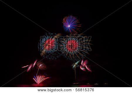 Fireworks over night sky