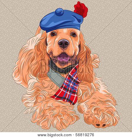 Vector Dog American Cocker Spaniel  In Scottish Tam