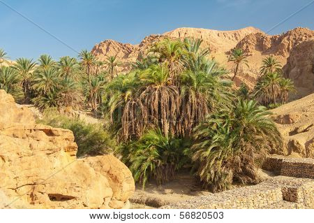 Famous Mountain oasis Chebika in Tunisia, Northern Africa