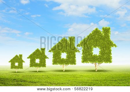 Conceptual image of green plant shaped like house