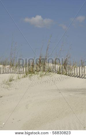 Pawley's Island Beach