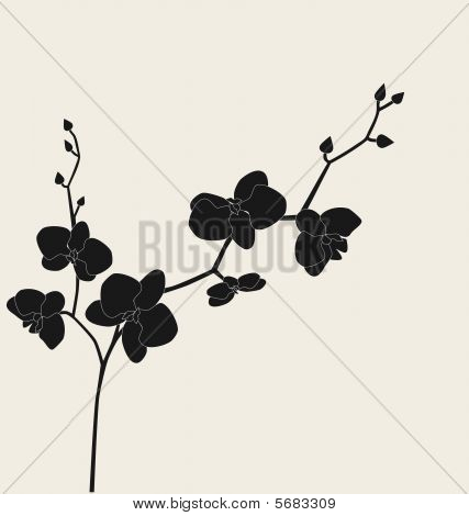 stilisierte Orchidee Branch, Vektor-illustration