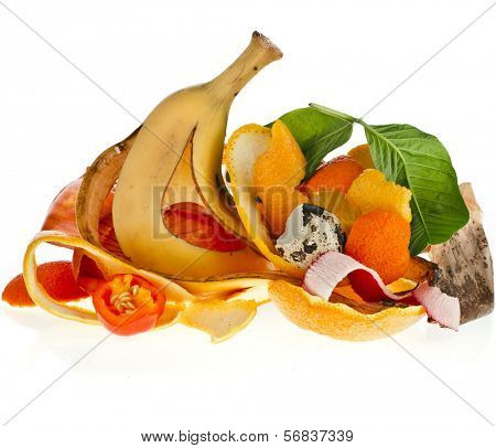 compost  pile of kitchen scraps isolated on white background close up