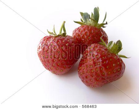 Strawberries On White 5