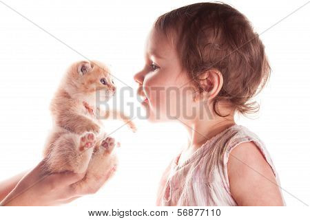 baby girl and kitten