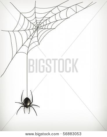 Spider web, bitmap copy