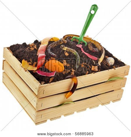 compost wooden crate box full  kitchen scraps isolated on white background