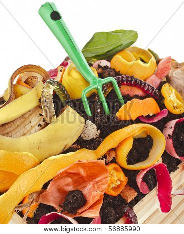 compost  pile of kitchen trash scraps isolated on white background