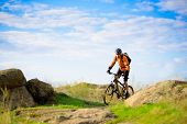 image of exercise bike  - Cyclist Riding the Bike on the Beautiful Spring Mountain Trail - JPG