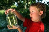 stock photo of fireflies  - Boy with a jar of fireflies - JPG