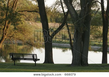 Quiet Bench