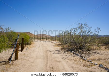 Road Into The Desert Wilderness