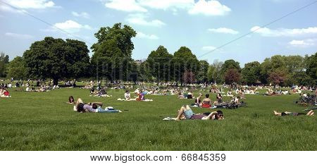 People laying on grass at park