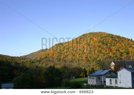 Fall Foliage In The Mountains