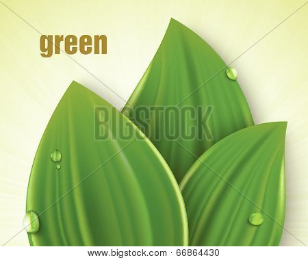 Vector background in pastel colors with green grass and dew