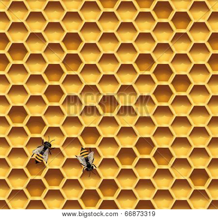 Honeycomb and bees seamless vector background. Illustration of honeycomb with bees.