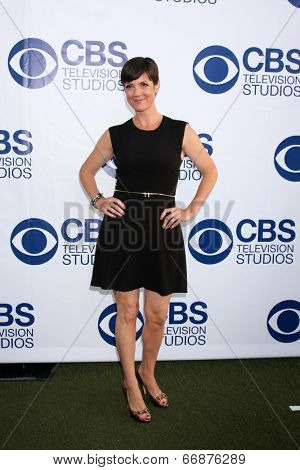 LOS ANGELES - MAY 19:  Zoe McLellan at the CBS Summer Soiree at the London Hotel on May 19, 2014 in West Hollywood, CA