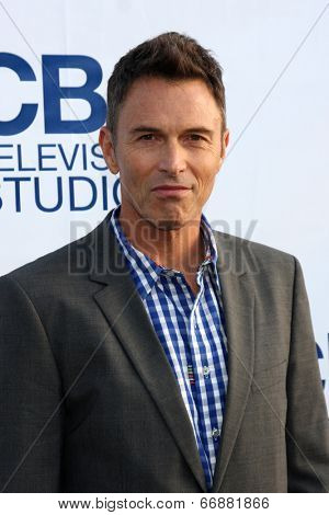 LOS ANGELES - MAY 19:  Tim Daly at the CBS Summer Soiree at the London Hotel on May 19, 2014 in West Hollywood, CA