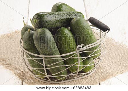 Freshly Picked Gherkin In A Basket